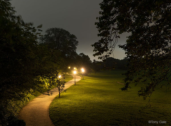 Prospect Park ©Tony Gale
