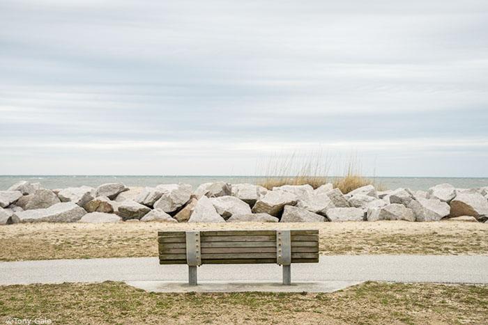 Park Bench ©Tony Gale