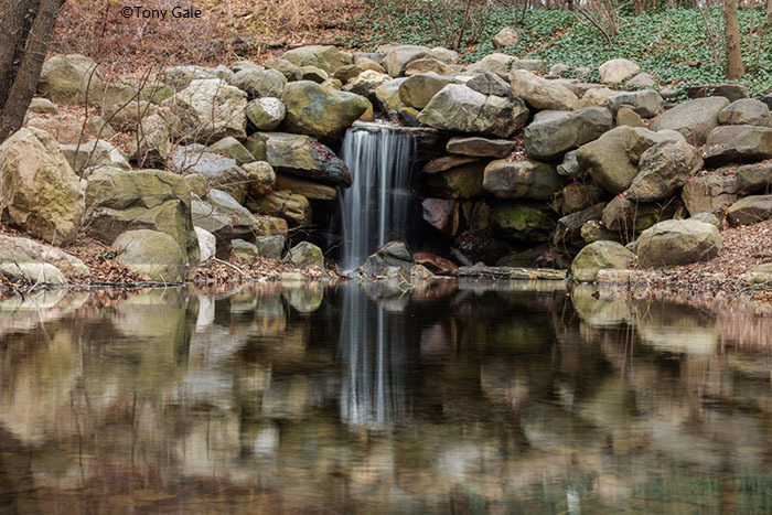 Prospect park Waterfall ©Tony Gale