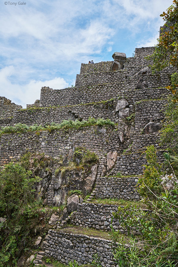 Waynu Picchu ©Tony Gale